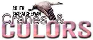 Cranes & Colors