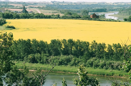 South Saskatchewan River Valley near Petite Ville