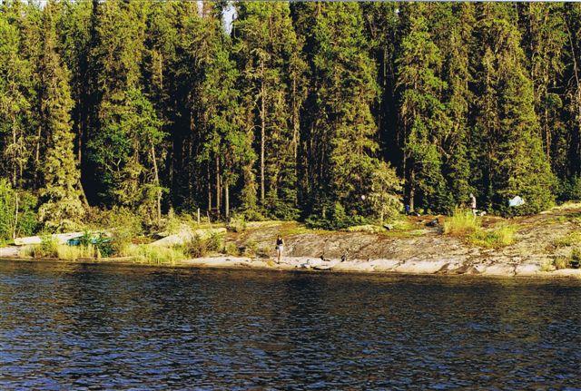 Pine Island Saskatchewan River