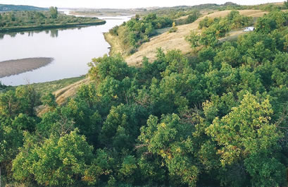 Wilderness campsite on the South Saskatchewan riverbank