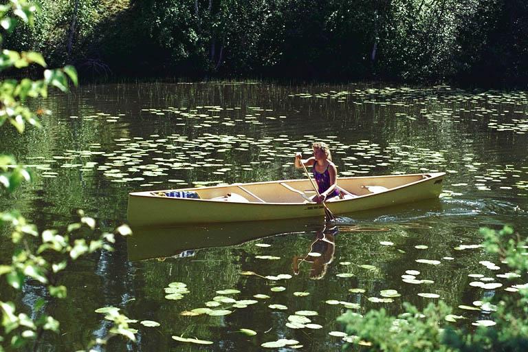 Canoeing through Churchill River water lilies