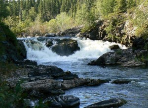 Side stream at Twin Falls