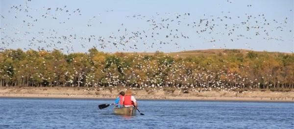 South Sask River fall canoe trip